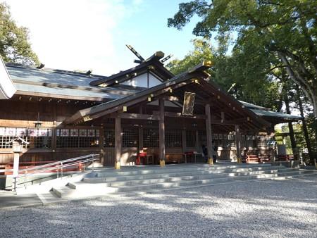 172229-猿田彦神社 (2)