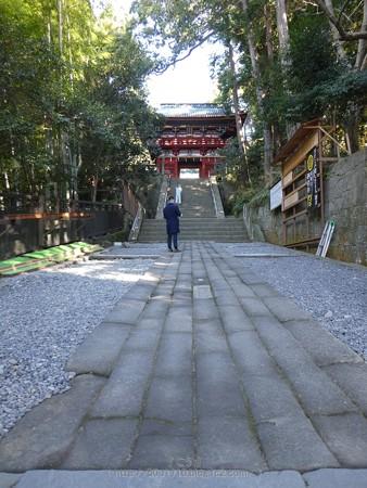 180110-久能山東照宮 (143)
