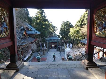 180110-久能山東照宮 (117)