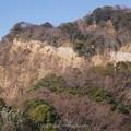 Photos: 180110-久能山ロープウェイ (14)