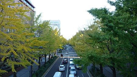 091118-山下公園通 (7)