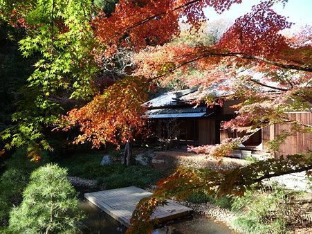 091204-明月院庭園 (72)