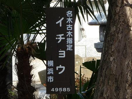 100120-3.喜昌寺 (6)