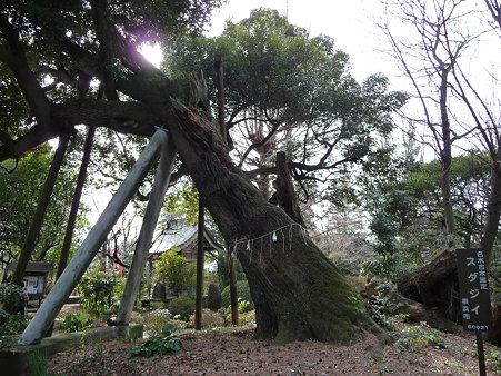 100120-6.西福寺 (10)