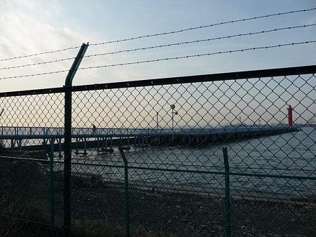 100219-大黒海釣り桟橋 (2)