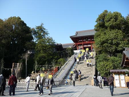 100319-八幡さま (10)