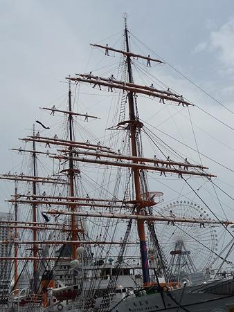 100429-日本丸 総帆展帆-31
