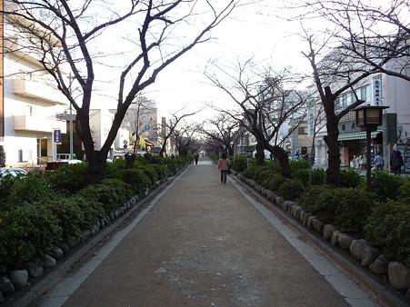 101210-段葛 (3)