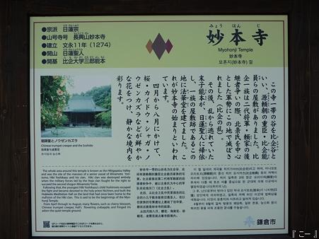 110406-妙本寺 (2)