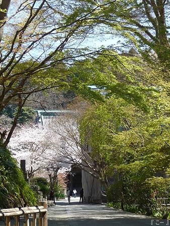 110406-妙本寺 (34)