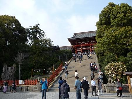 110411-八幡さま (7)