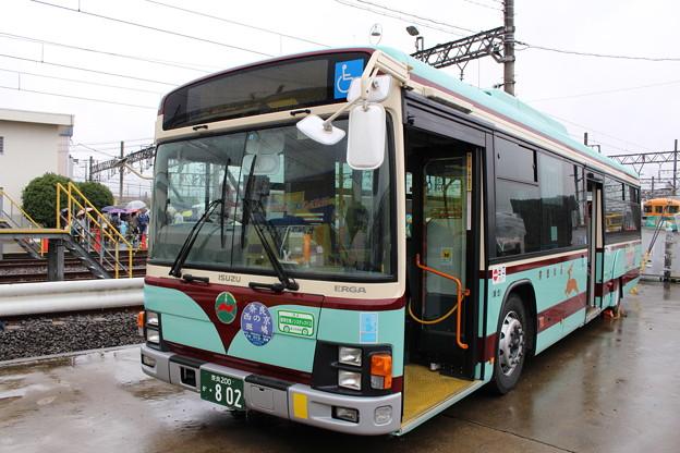 IMG_0644 奈良交通復刻塗装