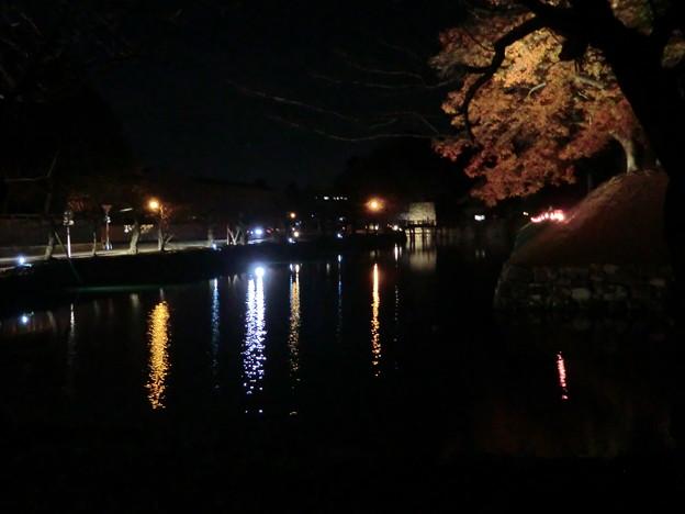 彦根城の散紅葉とひこにゃん (64)