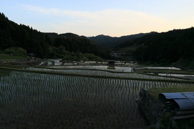 四谷千枚田原風景
