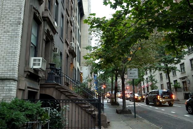 アメマーズ:ニューヨーク・GR31652