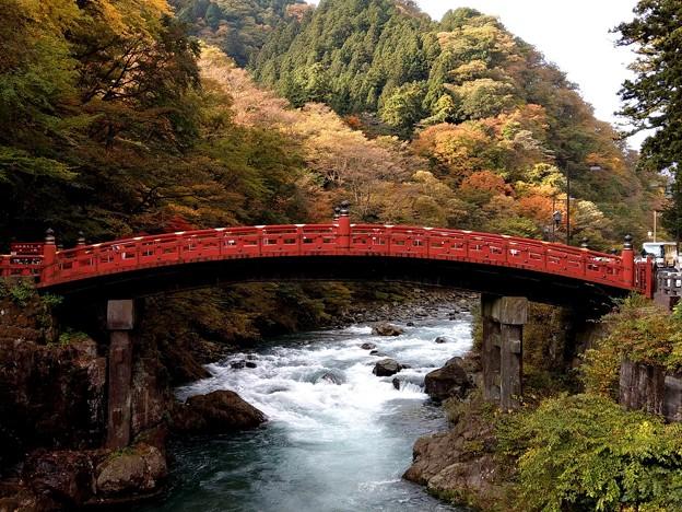 2017秋 日光 神橋