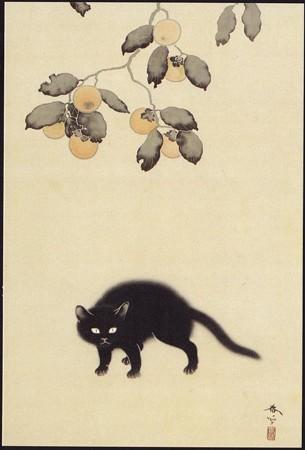 黒猫,拡大