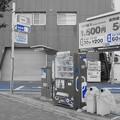 Photos: DSC00657