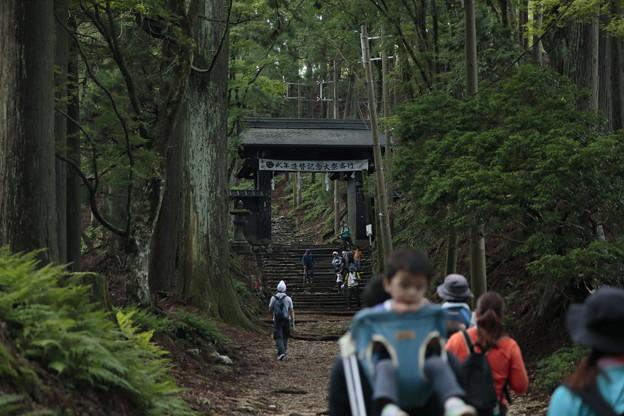 京都・愛宕山12