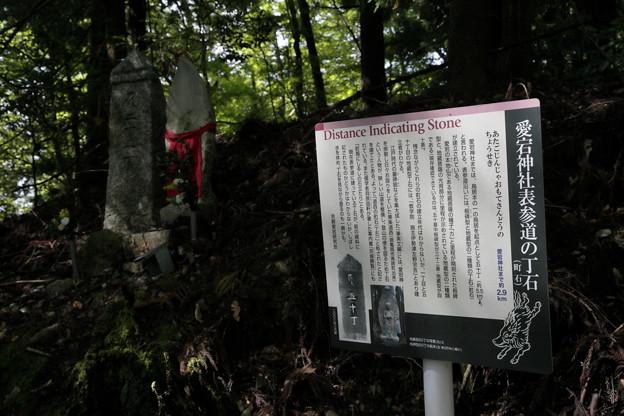 京都・愛宕山05