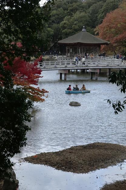 奈良公園11
