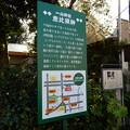 与野七福神めぐりマップ