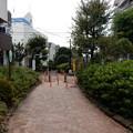 写真: 立会道路