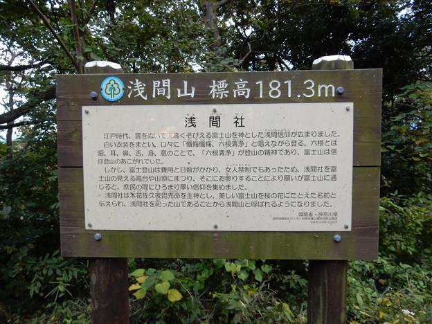 浅間山 181,3