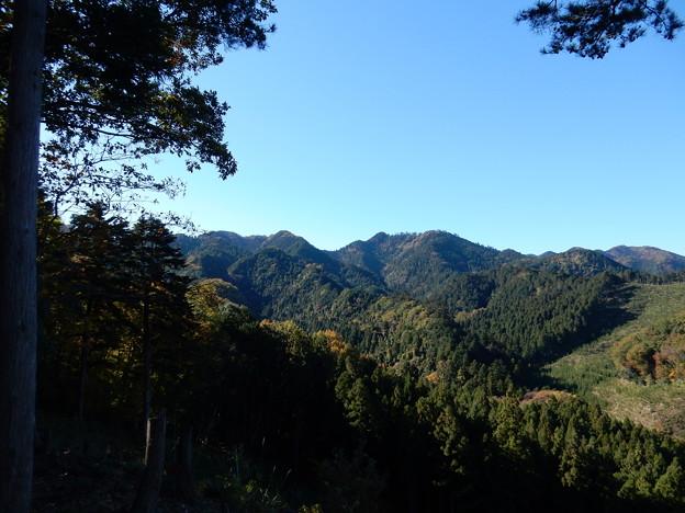 山神神社裏
