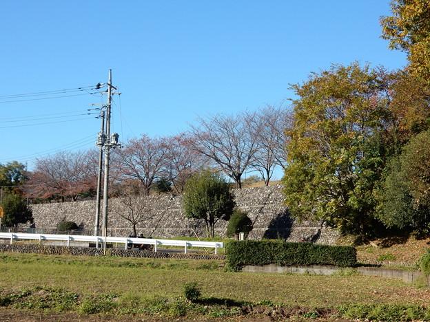 川辺堀之内城跡