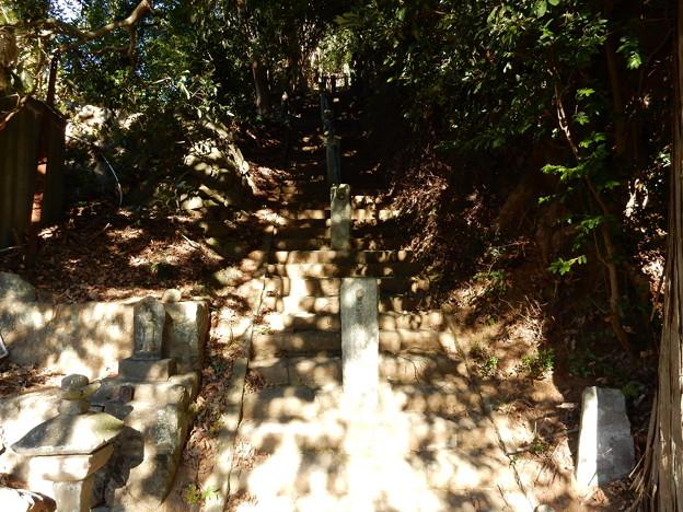 石橋山古戦場への階段