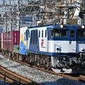 貨物列車 (EF641034)