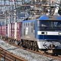写真: 貨物列車 (EF210-901)