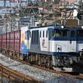 写真: 貨物列車 (EF641015)