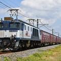貨物列車 (EF641008)