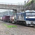 写真: 貨物列車 (EF210-151)