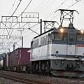 貨物列車 (EF652083)