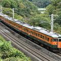 写真: 上越線 普通列車 731M (115系)