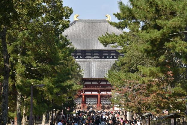 東大寺 中門と大仏殿