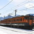 上越線普通列車 731M (115系)