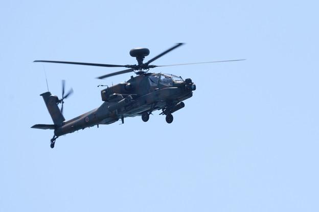 写真: AH-64D -2