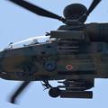 写真: AH-64D -5