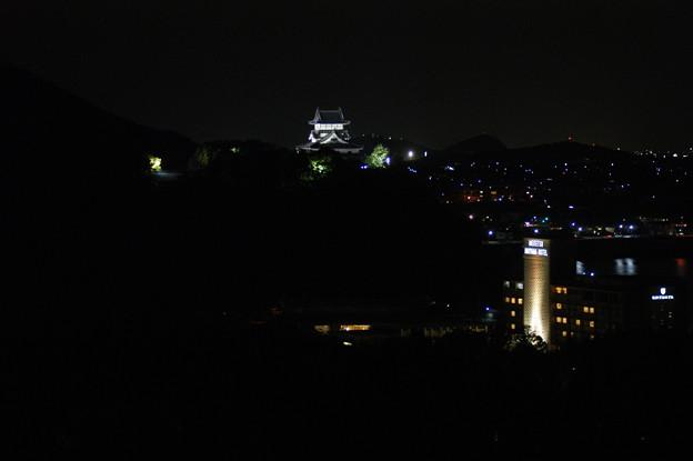成田山から望む犬山城と夜景