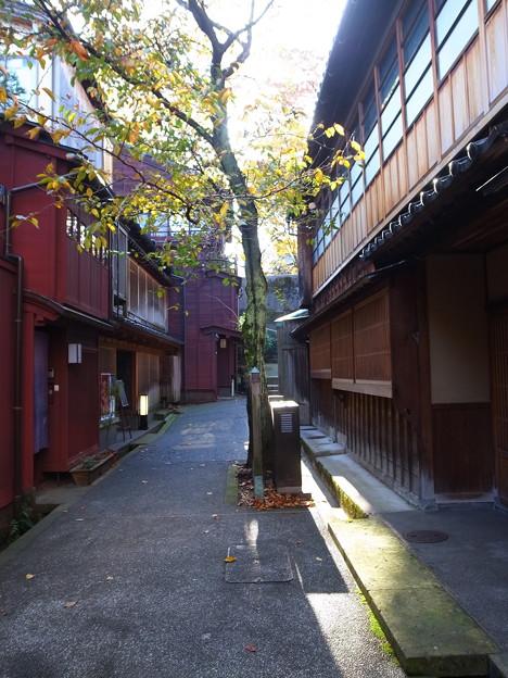 金沢の秋1