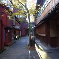 写真: 金沢の秋1