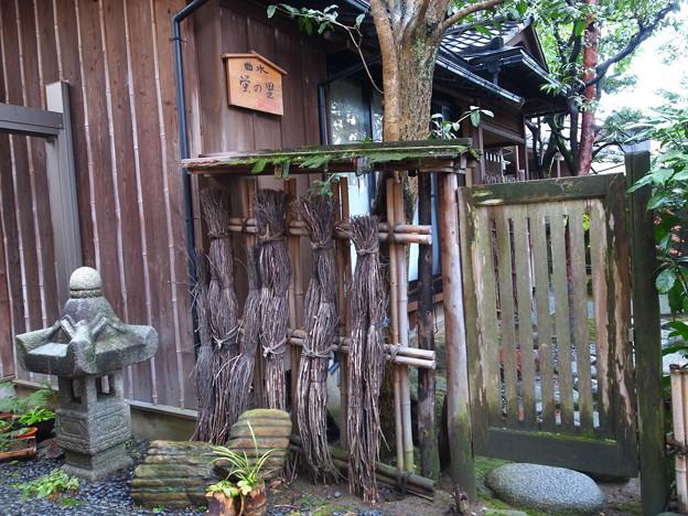 写真: 金沢の秋3