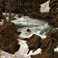 残雪のある渓流2(津奈木沢)