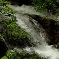 新緑の岩魚の滝3
