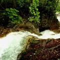新緑の照葉峡渓流6