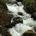 新緑の照葉峡渓流15